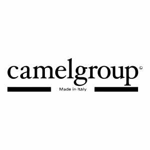 Camenl Group